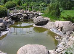 Ландшафтный дизайн пруда