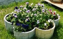 Цветники: вазоны с цветами