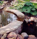 бассейны в ландшафте