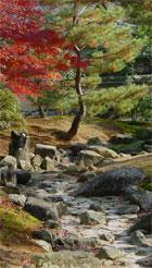 каменистый ручей